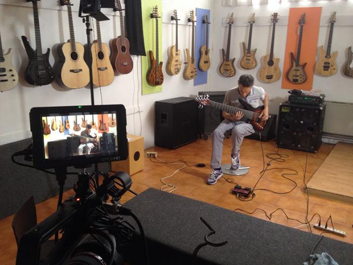 Manne guitars