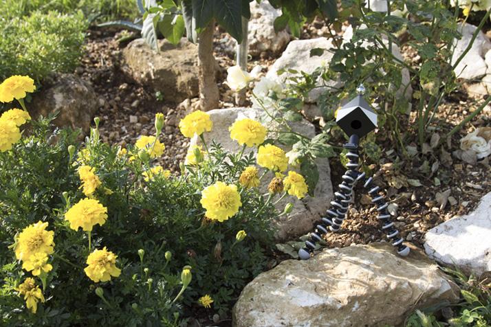 spydercube fiori